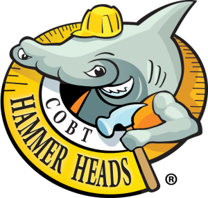 hammer-heads-logo